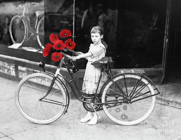 Wall Art - Photograph - Poppy Girl by Mindy Sommers