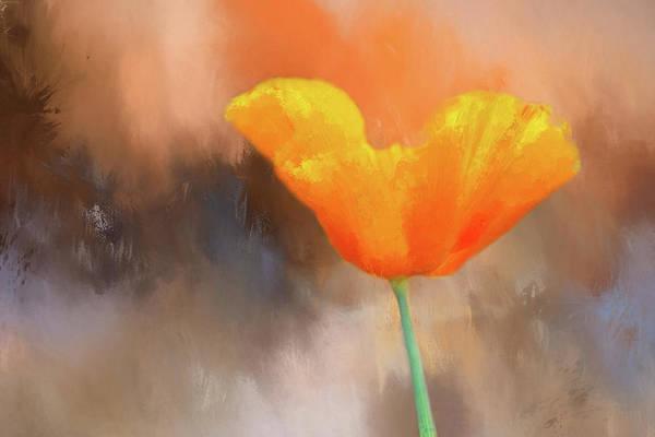 Wild Poppies Digital Art - Poppy Textured by Terry Davis