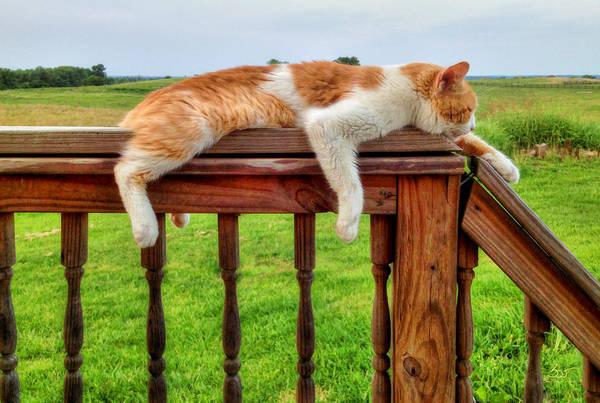 Photograph - Porch Drape by Sam Davis Johnson