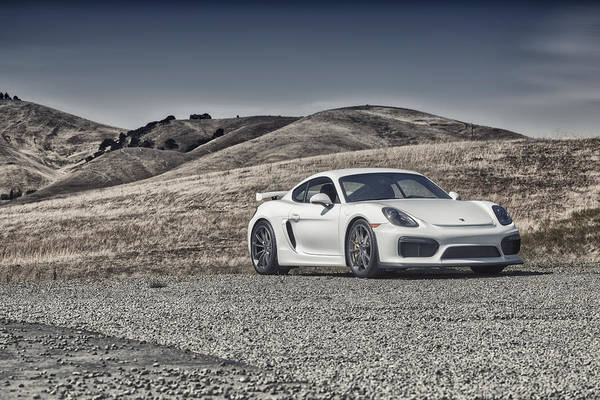 Porsche Cayman Gt4 In The Wild Art Print