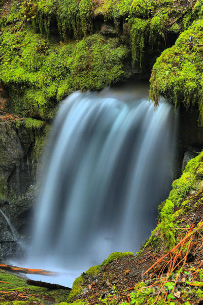 Photograph - Port Alice Secret Waterfall by Adam Jewell