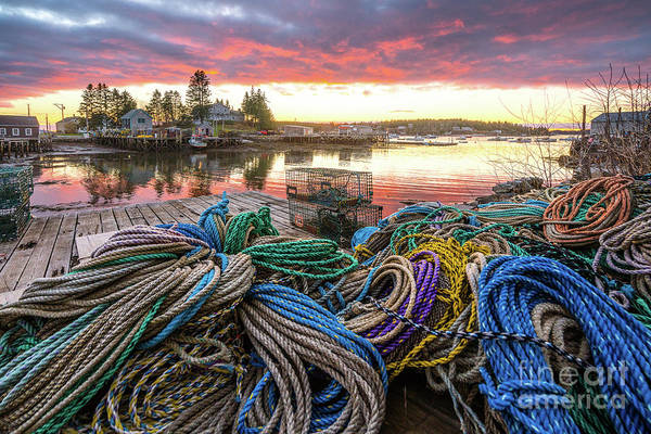 Lobstering Photograph - Port Clyde Rope by Benjamin Williamson