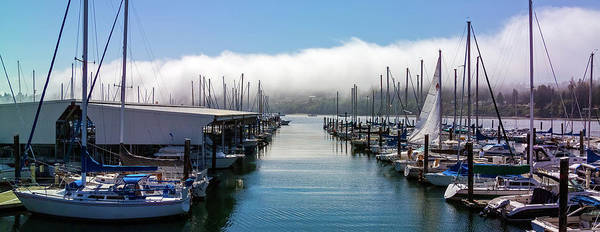 Photograph - Port Kingston Marina by Greg Reed