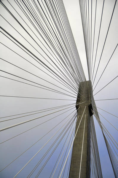 Cable-stayed Bridge Photograph - Port Mann Bridge by Pelo Blanco Photo