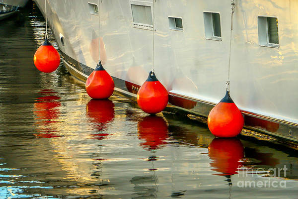 Photograph - Port Side Bumper Reflection by Tom Claud