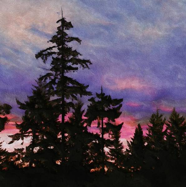 Port Townsend Digital Art - Port Townsend Sunset by Lisa Page
