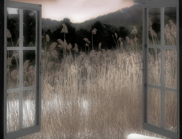 Wall Art - Photograph - Portal by Mindy Sommers