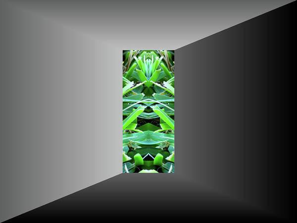 Digital Art - Portal To Grass by Kathy K McClellan