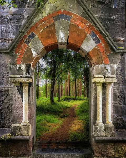 Photograph - Portal To Portumna Forest by James Truett