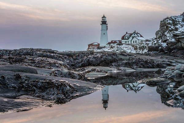 Photograph - Portland Head Light Reflection by Colin Chase