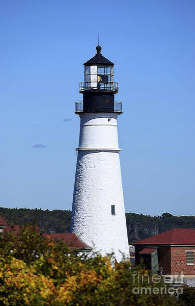 Photograph - Portland Head Lighthouse by Patti Whitten