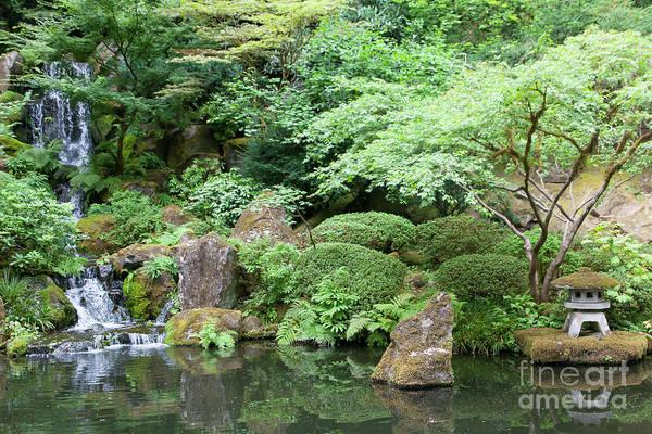 Photograph - Portland Japanese Garden Portland Oregon 5d3824 by Wingsdomain Art and Photography