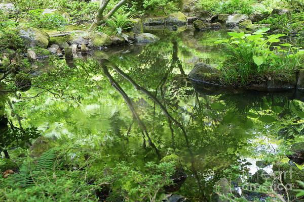 Photograph - Portland Japanese Garden Portland Oregon Dsc6690 by Wingsdomain Art and Photography