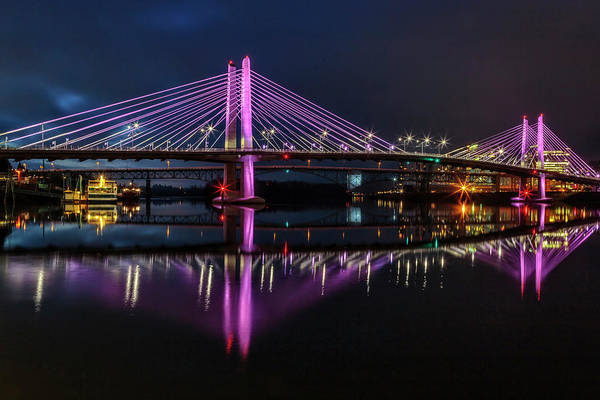 Photograph - Portland Pretty In Pink by Wes and Dotty Weber