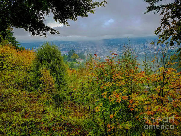 Photograph - Portland View by Jon Burch Photography