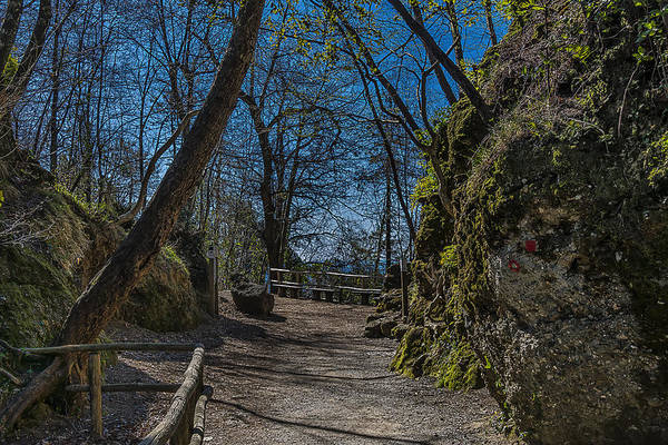 Photograph - Portofino Mount Hiking Itinerary Pass by Enrico Pelos