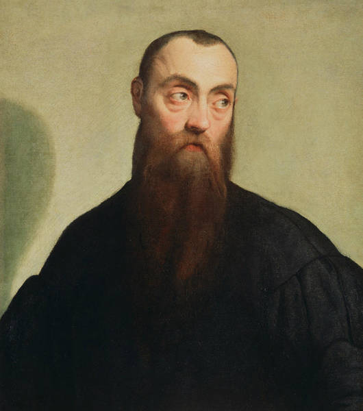 16th Century Painting - Portrait Of A Bearded Man by Jacopo Bassano