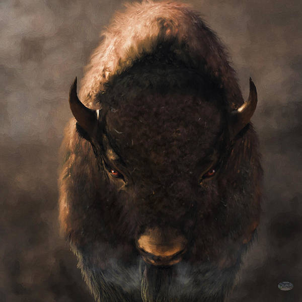 Digital Art - Portrait Of A Buffalo by Daniel Eskridge