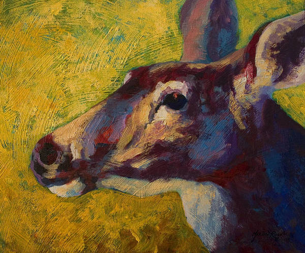 Whitetail Wall Art - Painting - Portrait Of A Doe by Marion Rose