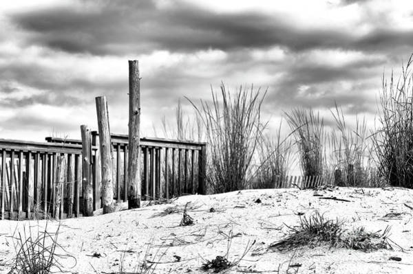 Photograph - Portrait Of A Jersey Shore Dune by John Rizzuto