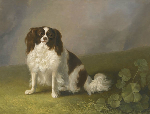 Wall Art - Painting - Portrait Of A King Charles Spaniel In A Landscape by Jacob Philipp Hackert