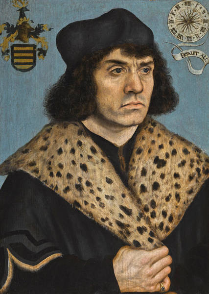 Wall Art - Painting - Portrait Of A Man With A Spotted Fur Collar by Lucas Cranach the Elder