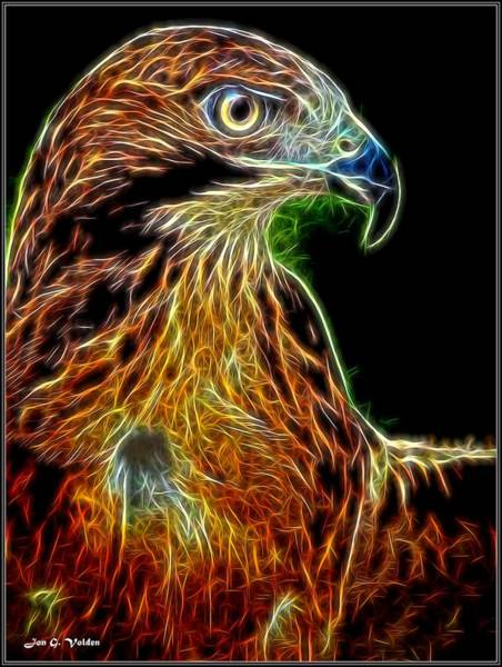 Painting - Portrait Of A Phoenix by Jon Volden