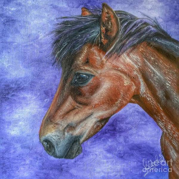 Painting - Portrait Of A Pony by Abbie Shores