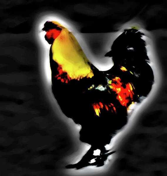 Photograph - Portrait Of A Rooster by Gina O'Brien