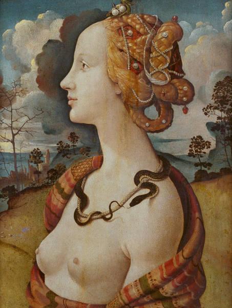 16th Century Painting - Portrait Of A Woman Called Simonetta Vespucci by Piero di Cosimo