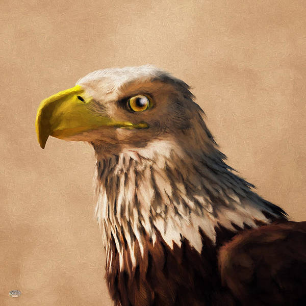 Digital Art - Portrait Of An Eagle by Daniel Eskridge
