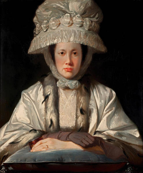 Boa Painting - Portrait Of Anne Howard-vyse by Mountain Dreams