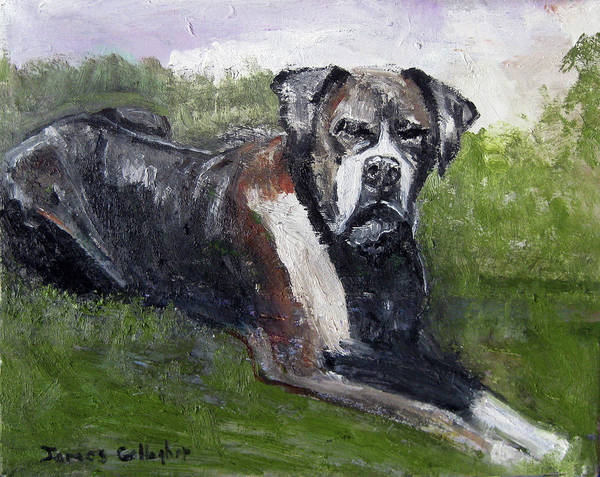 Wall Art - Painting - Portrait Of Baxter by James Gallagher