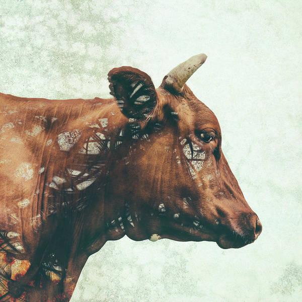 Farms Digital Art - Portrait Of Bess by Katherine Smit
