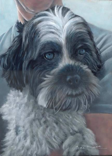 Painting - Portrait Of Charley by John Neeve