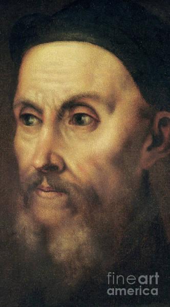 Titian Painting - Portrait Of John Calvin by Titian