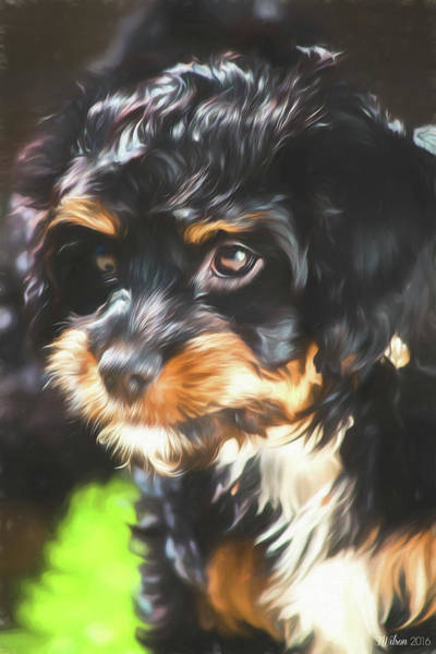Photograph - Portrait Of Molly by Teresa Wilson