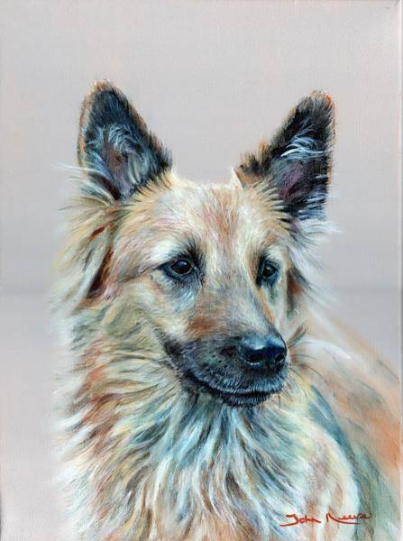 Painting - Portrait Of Sasha by John Neeve