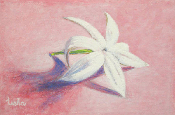 Usha Painting - Portrait Of The Jasmine Flower by Usha Shantharam