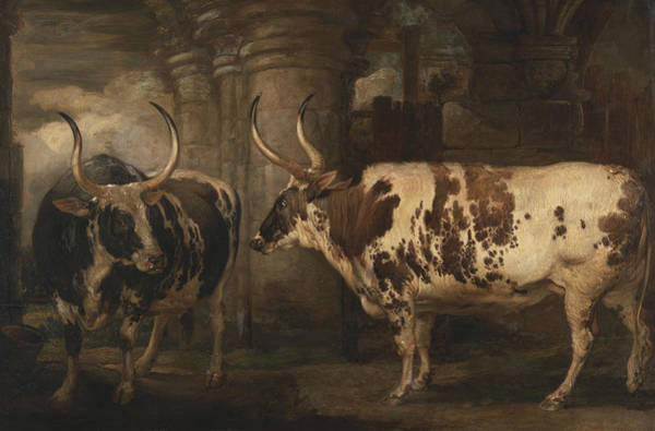 Ward Painting - Portraits Of Two Extraordinary Oxen, The Property Of The Earl Of Powis by James Ward
