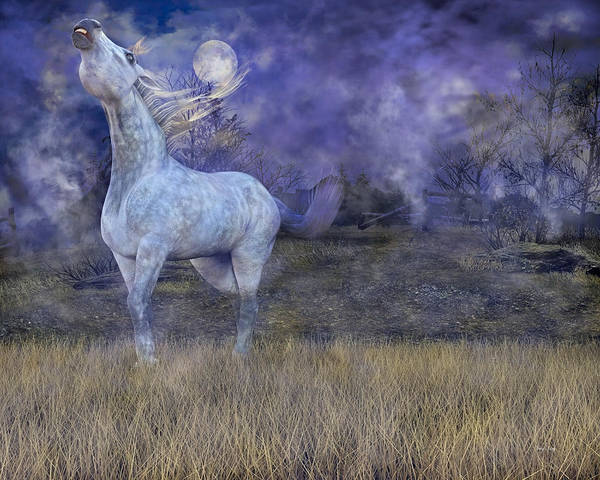 White Horse Digital Art - Possession  by Betsy Knapp