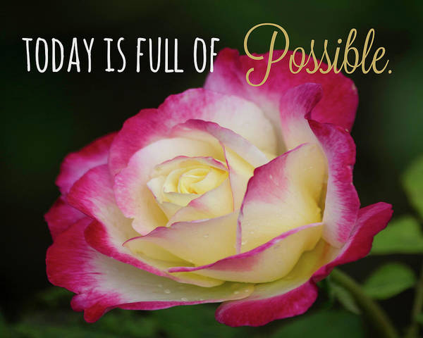 Photograph - Today Is Full Of Possible by Teresa Wilson