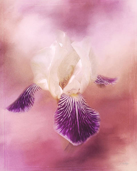 Painting - Possibilities - Iris Art by Jordan Blackstone