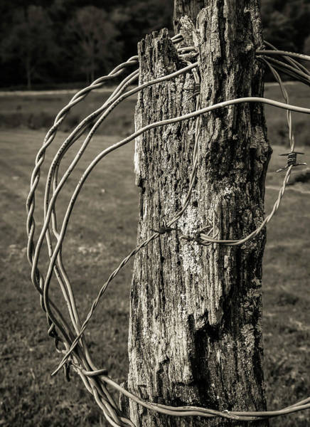 Wall Art - Photograph - Post And Barbed Wire by Elijah Knight