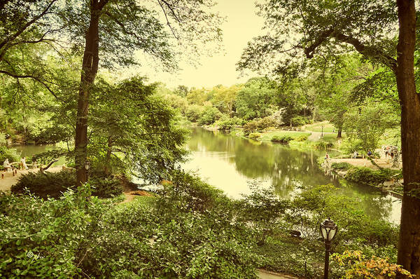 Photograph - Postcard From New York - Central Park by Paulette B Wright