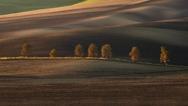 Nature Wall Art - Photograph - Postcards From Moravia by Jaroslaw Blaminsky