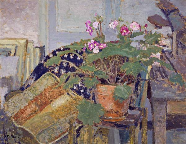 Painting - Pot Of Flowers by Edouard Vuillard