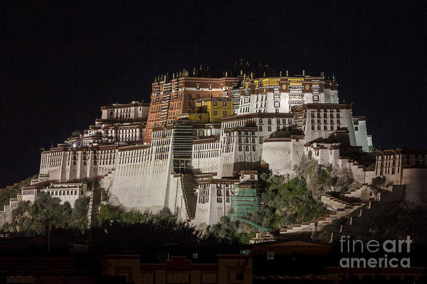 Potala Palace At Night Art Print