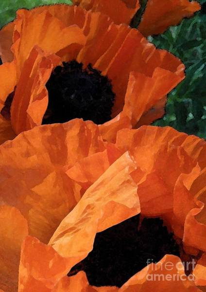Pod Mixed Media - Potent Poppies by Anne Ditmars