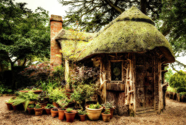 Photograph - Potting Shed by Nick Bywater